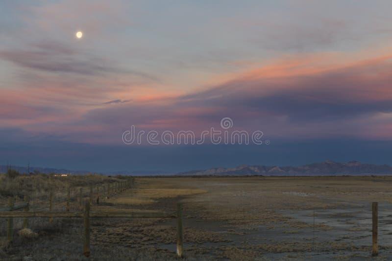 Humedales del Great Salt Lake fotos de archivo