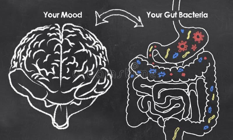 Humeur et bactéries d'intestin illustration de vecteur