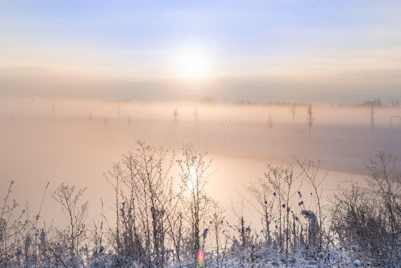 Humeurige zonsopgang in de wintermist royalty-vrije stock afbeeldingen