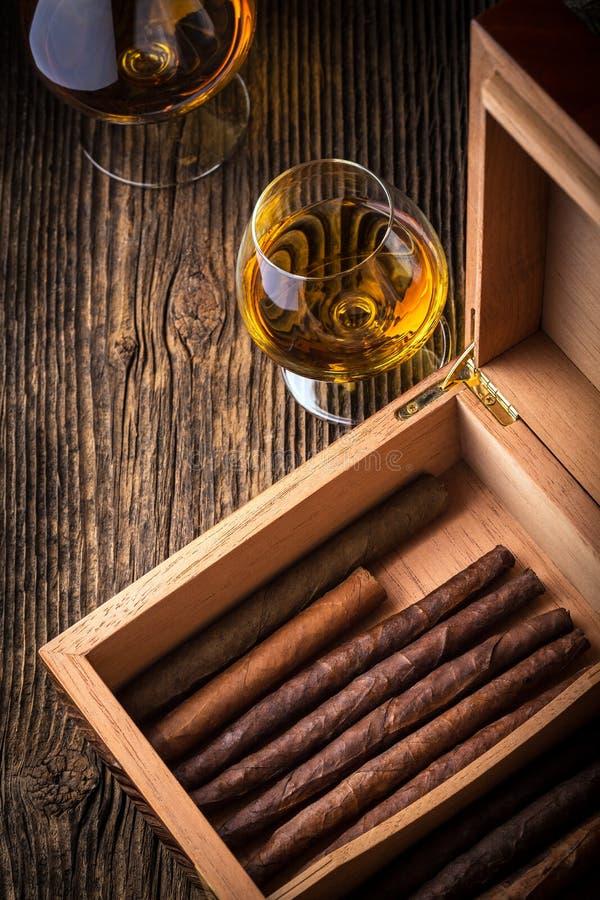 humidor con el cigarro y el coñac de la calidad fotografía de archivo