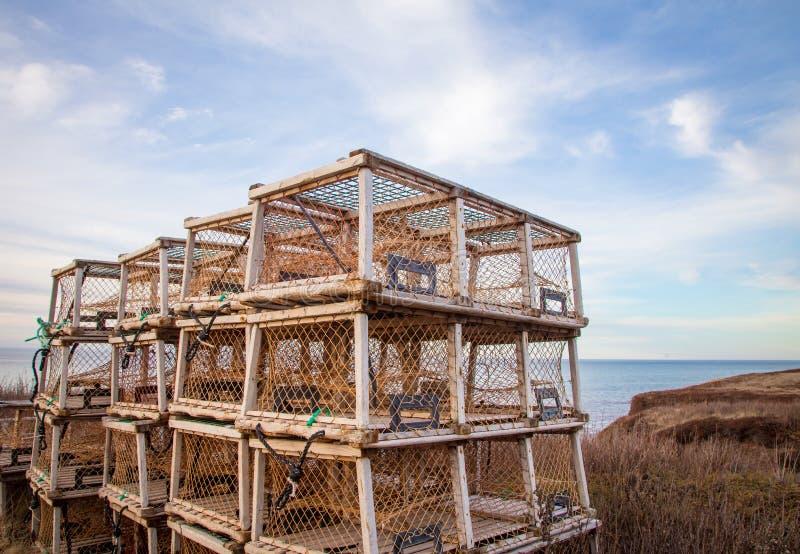 Hummerfallen in Prinzen Edward Island stockbilder