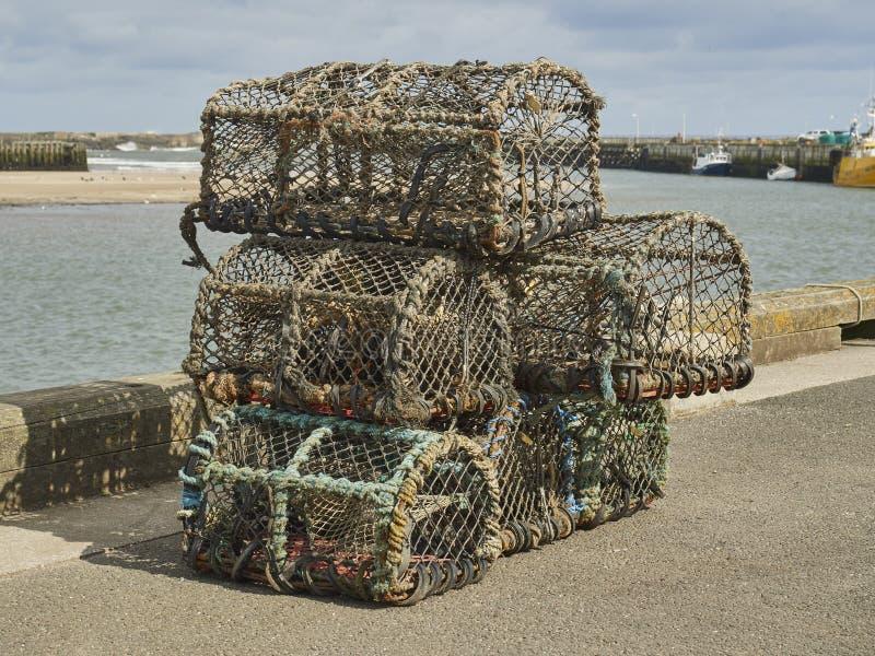 Hummerkrukor staplade på hamnen royaltyfria bilder