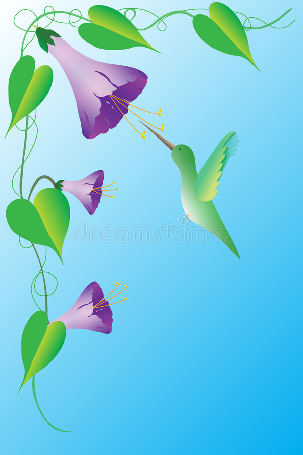 Download Humming Bird stock illustration. Image of leaf, growing - 1410406
