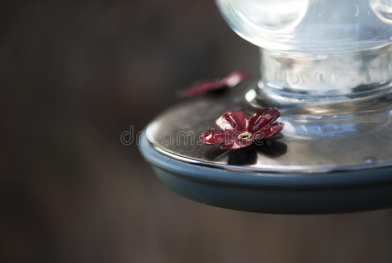 Humming Bird Feeder. A detail shot of a hummingbird feeder royalty free stock images