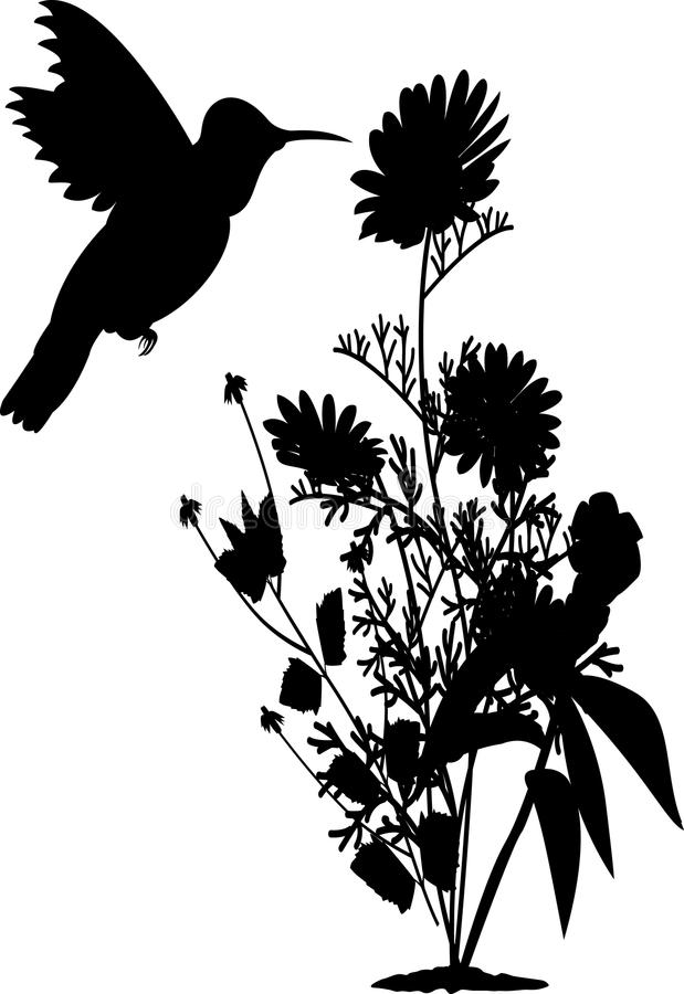 Humming bird silhouette with flower vector illustration