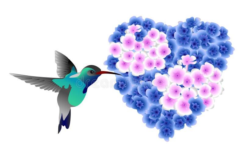 hummingbird vektor illustrationer
