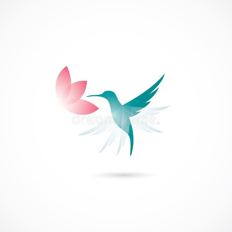 Hummingbird. Simple vector illustration of hummingbird