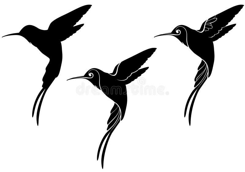 hummingbird stock de ilustración
