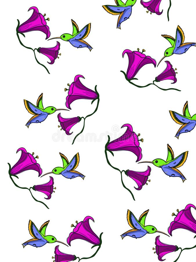 Hummingbird cartoon illustration drawing pattern white background royalty free illustration