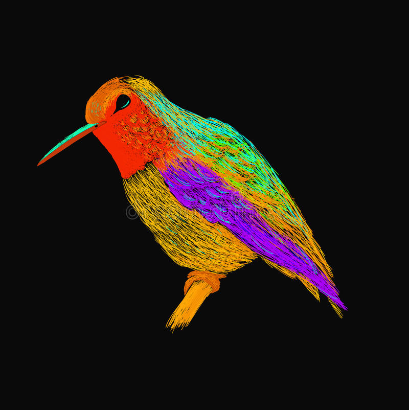Hummingbird with colorful glossy plumage. Modern pop art style. Colorful bird, black background. Vector illustration of colibri for greeting card,invitation stock illustration