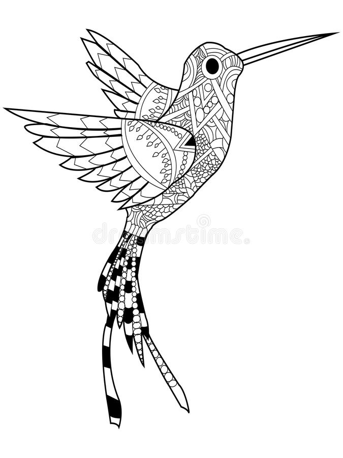 Hummingbird Coloring Vector For Adults Stock Vector - Illustration ...