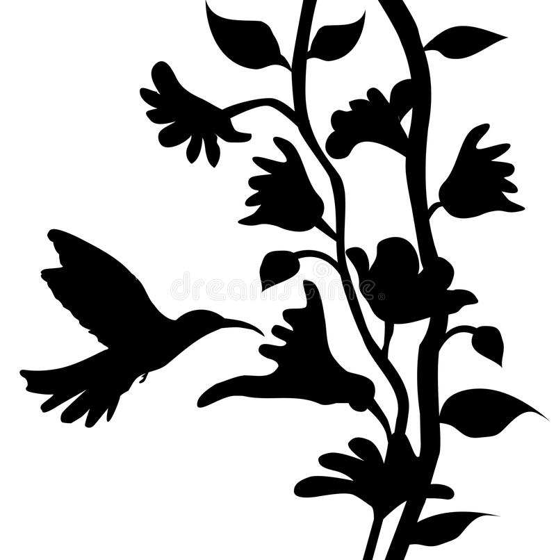 Black Flower Silhouette Stock Vector Illustration Of: Hummingbird And Flowers Silhouette- Vector Stock Vector