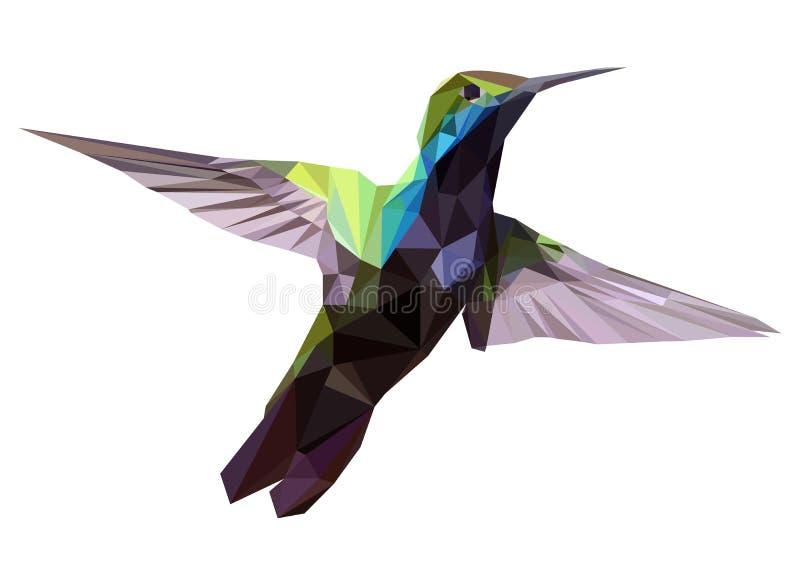 Hummingbird low poly design, geometric design. Vector Illustration, Hummingbird low poly design, geometric bird flying eps stock illustration