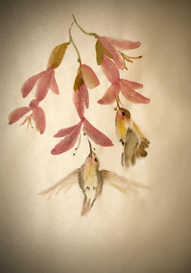 Hummingbird nektaru kopalnictwo ilustracji