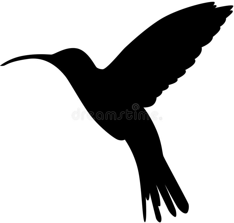 hummingbird sylwetka royalty ilustracja