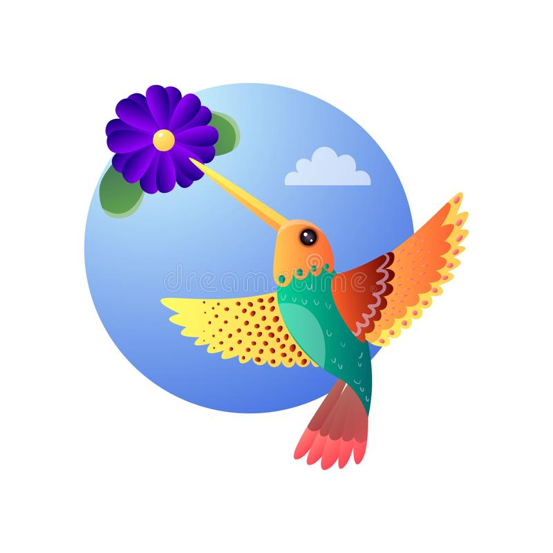 Hummingbirds with color plumage flying and collecting nectar from exotic bloomy flower. Tropical motley Hummingbirds with color plumage flying and collecting vector illustration