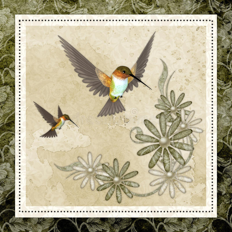 Download Hummingbirds & Design Background Stock Photos - Image: 15212293