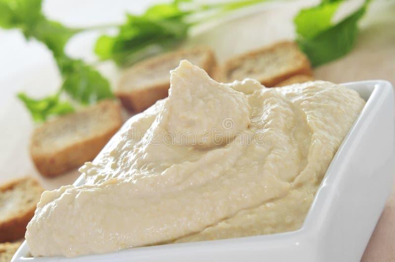 Hummus royaltyfria foton