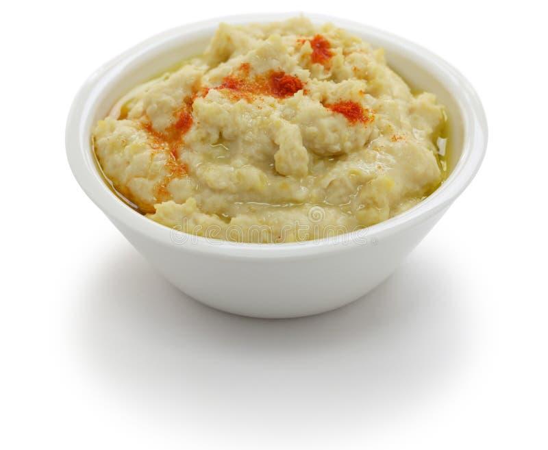 Hummus dopp royaltyfri bild