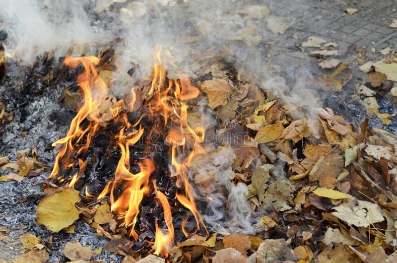 Humo de las hojas ardiendo imagenes de archivo