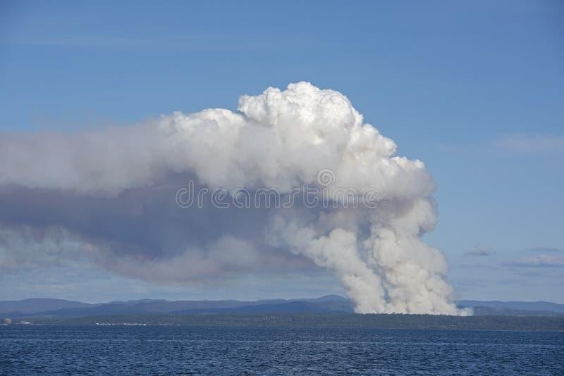 Humo del Bushfire imagen de archivo