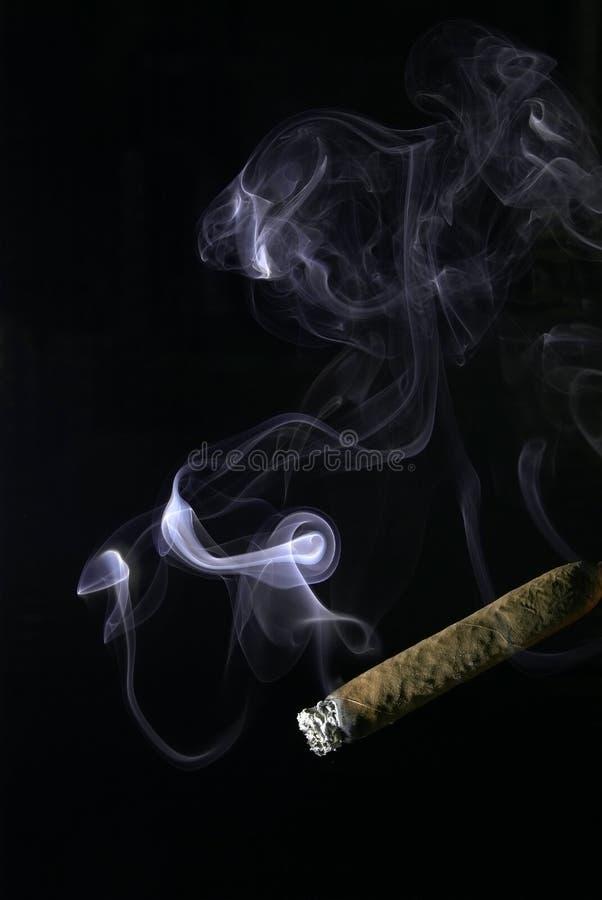 Humo del cigarro foto de archivo libre de regalías