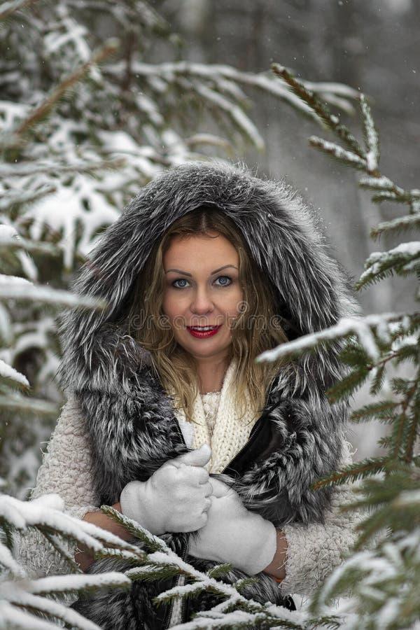Humor alegre do inverno, da menina com olhos azuis maravilhosos fotos de stock