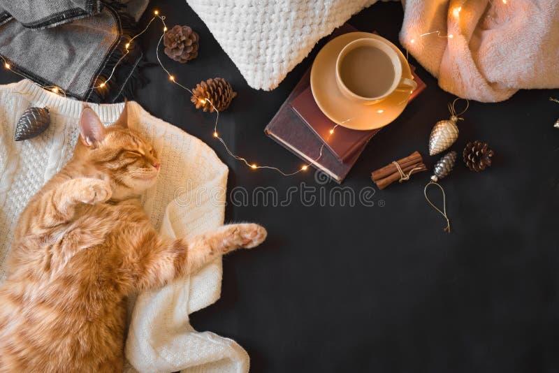 Humor de la Navidad con el gato del jengibre fotografía de archivo