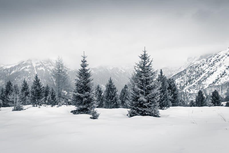 Humor del invierno en Val di Fassa, dolomías, Italia imagen de archivo libre de regalías