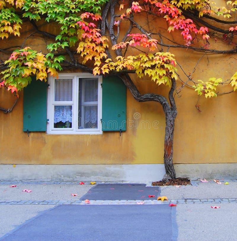 Humor del otoño foto de archivo libre de regalías