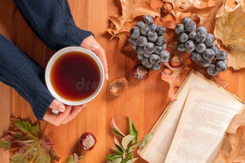 Humor del otoño, mujer que sostiene la taza de té caliente en manos foto de archivo libre de regalías