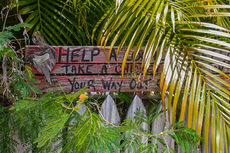 Humorous rustic wooden sign by picket fence in Key West surrounded by tropcal plants says Help a local sleep- Take a chicken with royalty free stock photos
