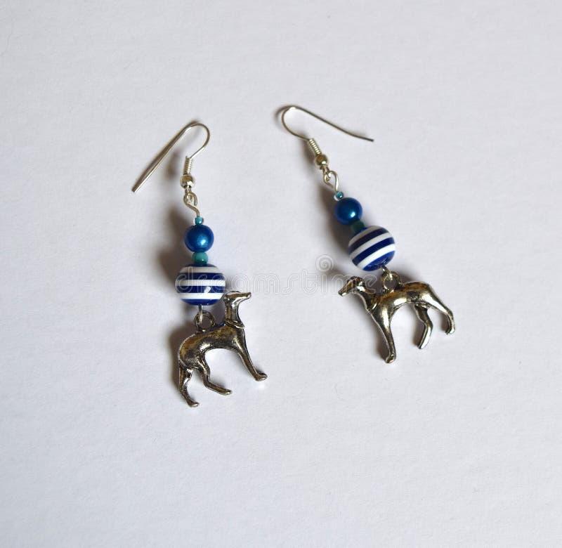 Hundörhängen med blått gjorde randig pärlor planlägger, sätter på land tema fotografering för bildbyråer