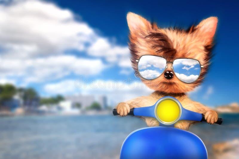 Hund auf Motorrad mit Reisehintergrund vektor abbildung
