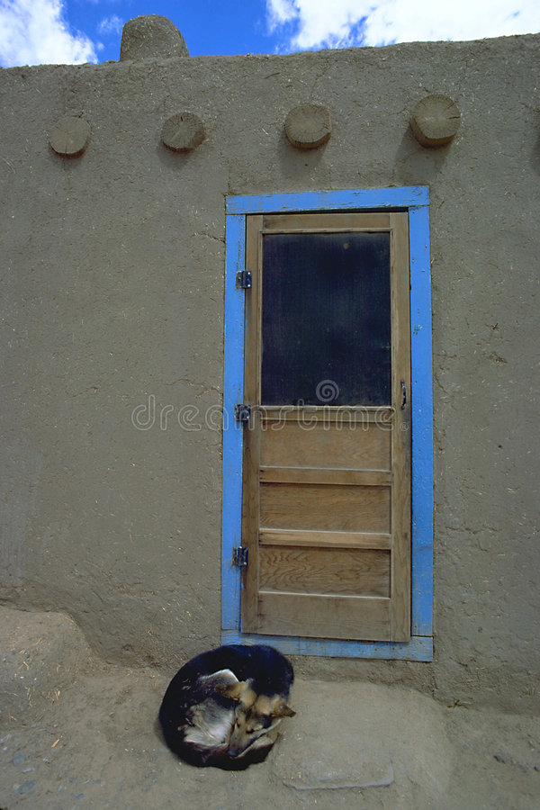 Download Hund an der blauen Tür stockfoto. Bild von taos, deutsch - 40418