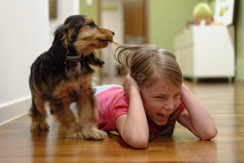 Hund, der das Haar des Mädchens zieht lizenzfreie stockfotos