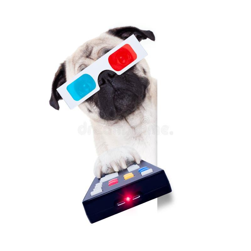 Hund, der die Filme aufpasst stockbild
