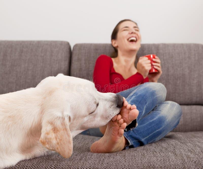Hund, der die Zehen leckt lizenzfreies stockbild