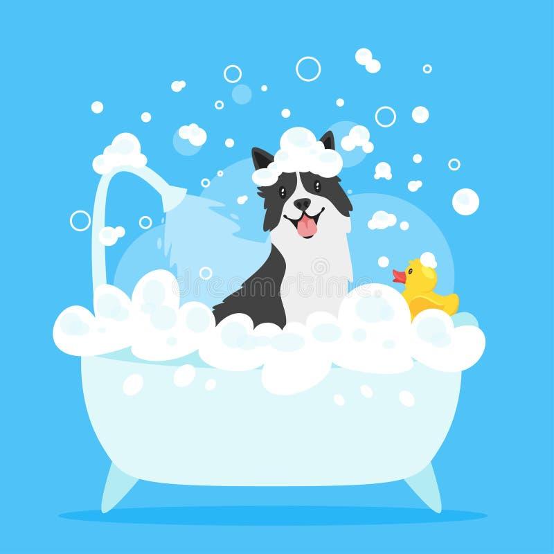 Hund, der ein Bad nimmt stock abbildung