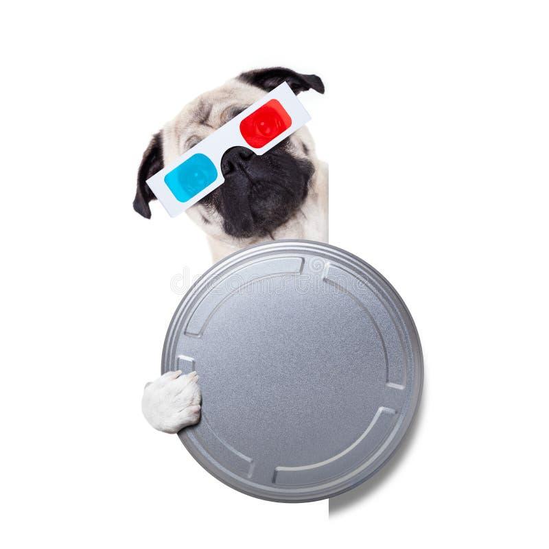 Hund, der einen Film überwacht stockfotografie