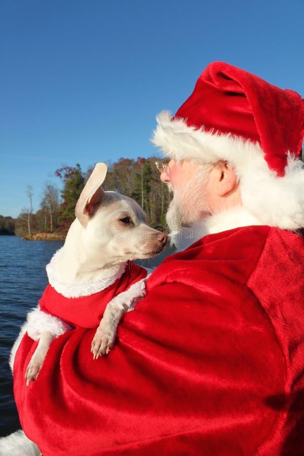 hund för 2 dock hans santa arkivfoto