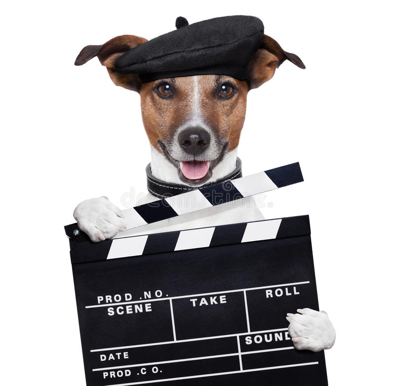 Hund för direktör för filmclapperbräde arkivfoton