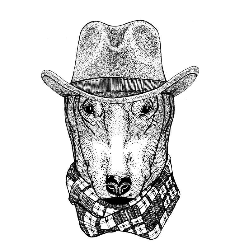 HUND för T-tröja för lös västra djur cowboy för hatt för cowboy för löst djur för t-skjorta design den bärande djura, affisch, ba royaltyfri illustrationer