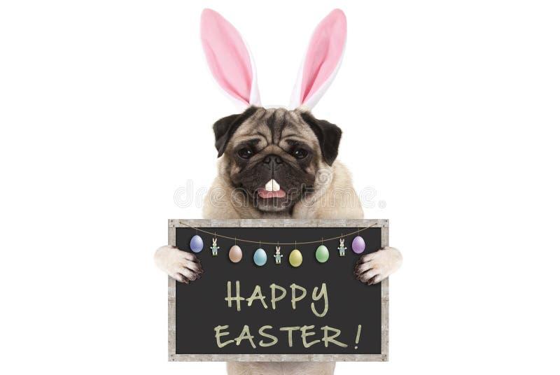 Hund för valp för mops för påskkanin med öron, ägg och svart tavla med text lyckliga easter royaltyfri bild