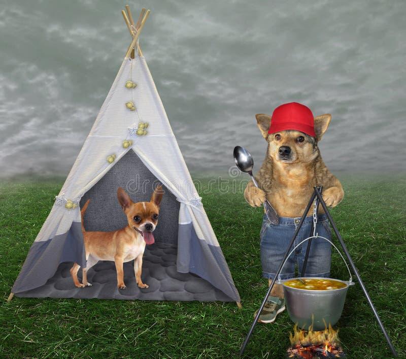 Hund kocht Suppe am Feuer 2 stockbilder