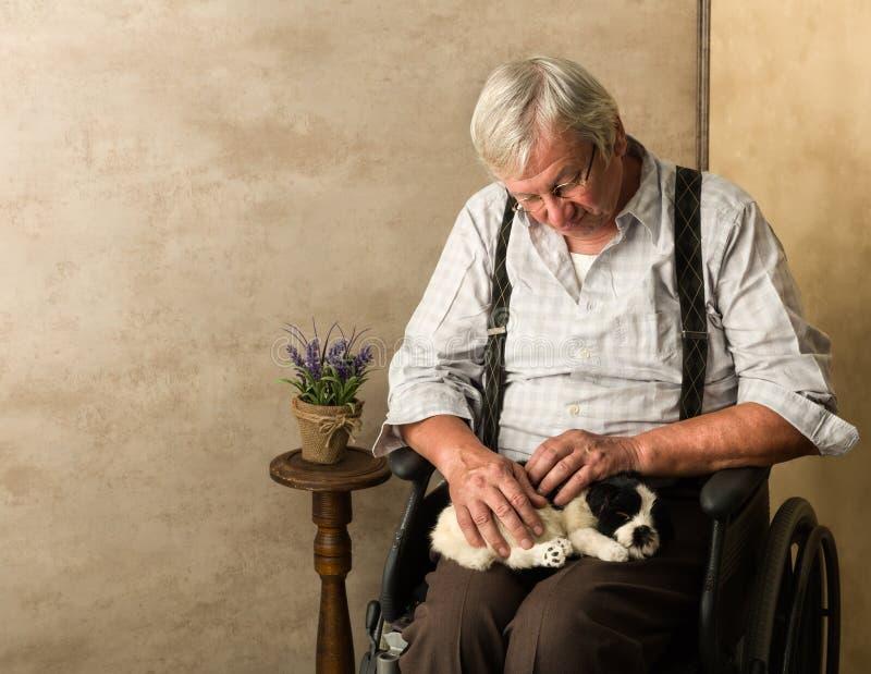 Hund med den äldre mannen arkivfoto