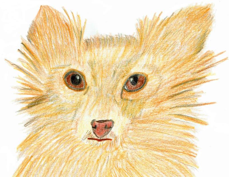 Hund med underbara drömlika ögon royaltyfri illustrationer