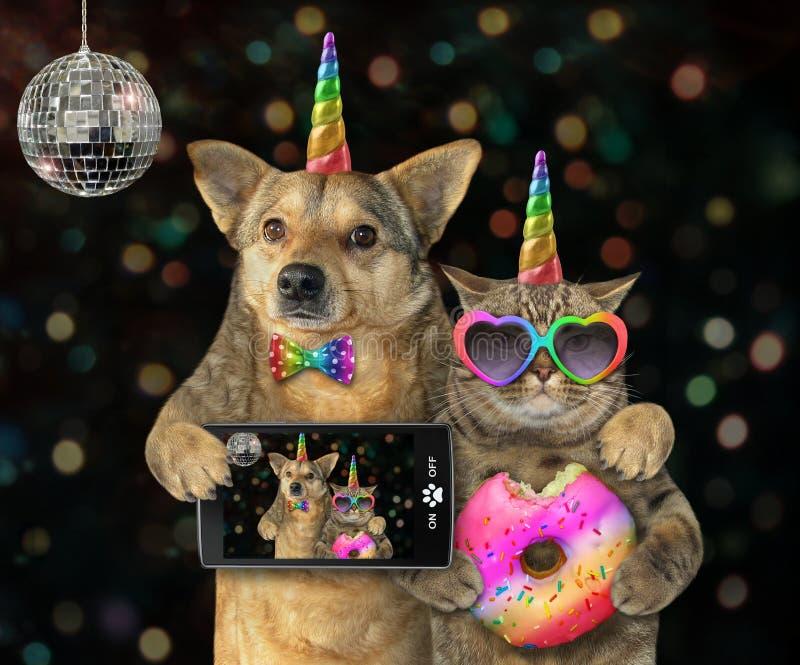 Hund mit einem Katzeneinhorn an einer Partei 2 stockfoto