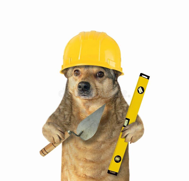 Hund mit einer Kelle und einem Niveau stockfotografie