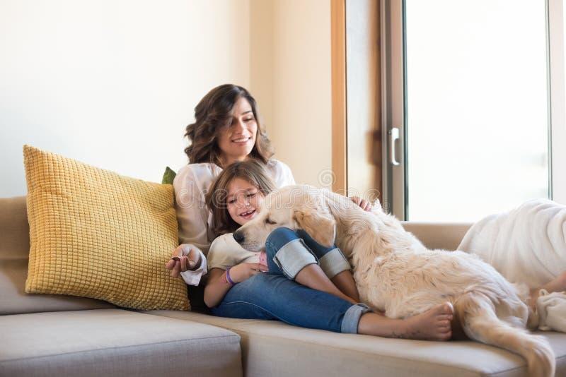 Hund mit menschlicher Familie zu Hause stockfotografie